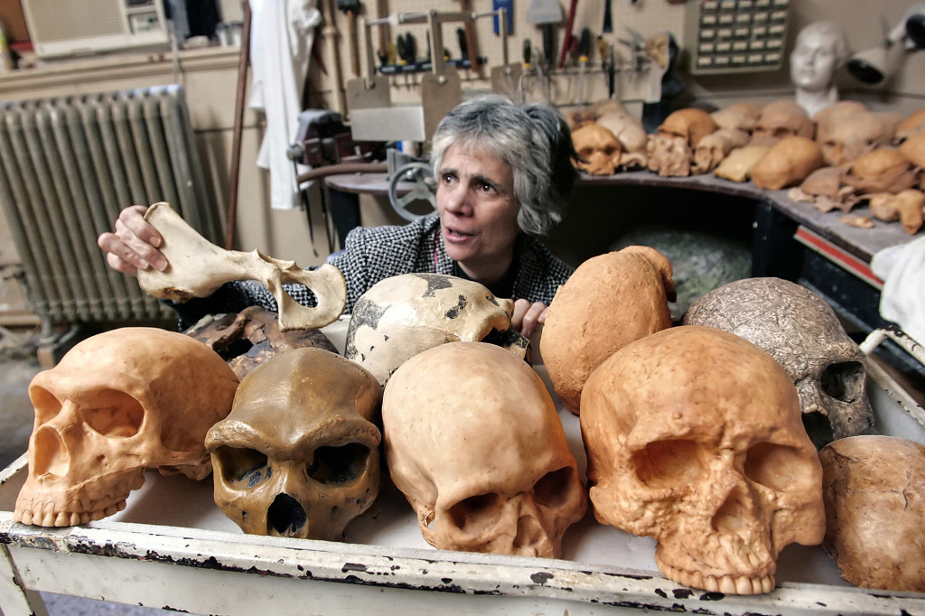 Dr. Janet Monge, loads a cart of cast skulls in preparation for Darwin Day at the Univerity of Pennsylvania Museum of Archaeology and Anthropology in Philadelphia